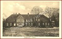 Neubrandenburg Fern_9